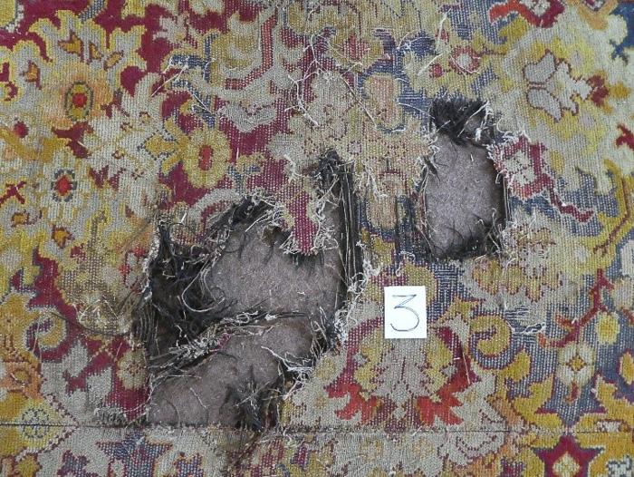 Carpet 1 before